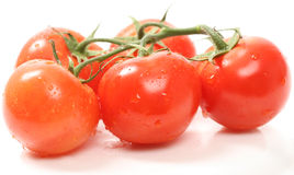 Red tomatoes Royalty Free Stock Photography