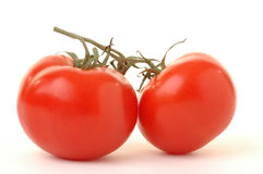 Red Tomatoes. Ripe red tomatoes on a white background Royalty Free Stock Image
