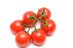 Red tomatoes. Tomatoes isolated on a white background Stock Images