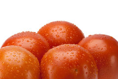 Red tomatoes. Isolated on white background. This has a clipping path Royalty Free Stock Photography