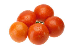 Red tomatoes Royalty Free Stock Images