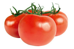Red tomatoes. Juicy red tomatoes isolated on white background Stock Images