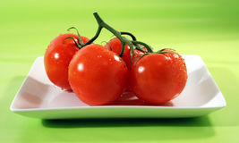 Red Tomatoes. On White Plate with green background Royalty Free Stock Photography