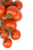 Red tomatoes. On white background Stock Image