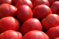 Red tomatoes background Royalty Free Stock Image