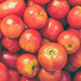 Red Tomatoes Background Stock Image