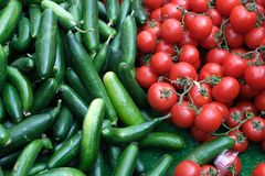 Red tomatoes background. Group of tomatoes and cucumber. Red tomatoes background. Group of tomatoes turkey royalty free stock photo