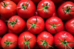 Red tomatoes background Royalty Free Stock Photo