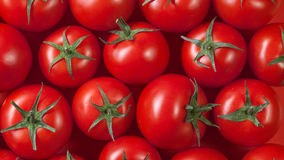 Red tomatoes background. top view Stock Photography
