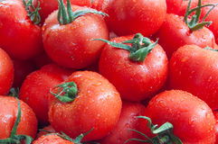 Red tomatoes background. top view. Red ripe  tomatoes for background. top view Stock Photo