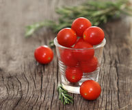 Red tomatoes and basil Stock Image