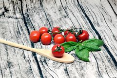 The tomatoes and basil royalty free stock image