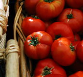 Red tomatoes in basket Stock Photography