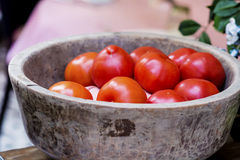 Red  tomatoes in big bowl Stock Photography