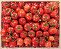 Red tomatoes in a box raw vegetables Royalty Free Stock Image