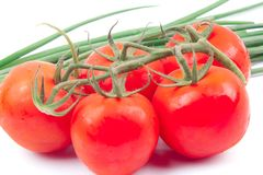 Red tomatoes on a branch Stock Photography