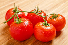 Red tomatoes on the branch. In the wood background Royalty Free Stock Photography