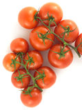 Red tomatoes on branches isolated on white Royalty Free Stock Photos