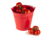 Red tomatoes in a bucket Royalty Free Stock Images