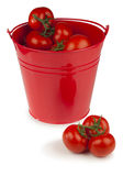 Red tomatoes in a bucket Royalty Free Stock Photography