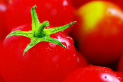 Red tomatoes cherry. Royalty Free Stock Image
