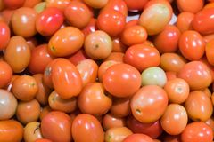 Red tomatoes or Cherry tomatoes background. royalty free stock images