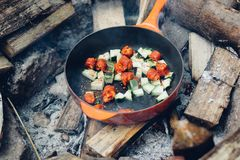 Red Tomatoes on Cooking Pan Near Wooden Log during Daytime Royalty Free Stock Images
