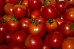 Red tomatoes with cuttings and water droplets, top view, backgro Royalty Free Stock Photo