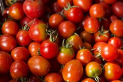 Red tomatoes with cuttings and water droplets, top view Stock Image