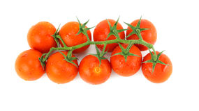 Red tomatoes. Tomatoes, red delicious Japanese garden Stock Image