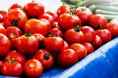 Red tomatoes on the desk at turkish bazaar Royalty Free Stock Image