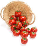 Red tomatoes  fall of the basket Royalty Free Stock Image