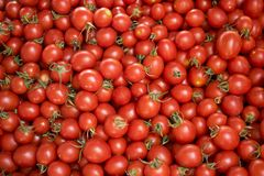 Red tomatoes at a farmers market. stock image