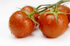 Red tomatoes food Stock Photos