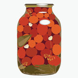 Red tomatoes  in glass bank.  illustration Royalty Free Stock Photos