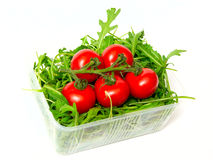 Red tomatoes and green arugula Stock Images