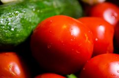 Red tomatoes. Green cucumber. Summer. Vegetables. Salad. Proper nutrition. Fresh vegetables. stock photos