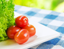 Red tomatoes and green lettuce on the white plate Royalty Free Stock Photo