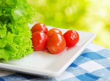 Red tomatoes and green lettuce on the white plate Stock Image