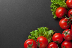 Red tomatoes with green salad Stock Images
