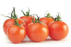 Red tomatoes with green stems. Group of red ripe tomatoes Stock Images