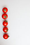 Red tomatoes in a line Royalty Free Stock Image