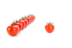 Red tomatoes lined up in a row on a white background Royalty Free Stock Images