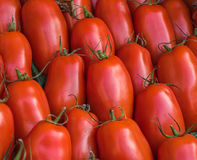 Red tomatoes in the market Royalty Free Stock Images