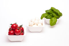 Red tomatoes, Mozzarella and basil Royalty Free Stock Photos