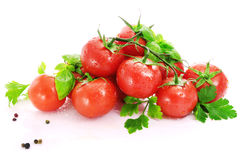 Red tomatoes, parsley and basil with water drops. Stock Photography