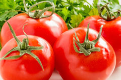 Red tomatoes and parsley leaves closeup Stock Photography