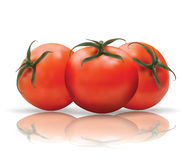 Red Tomatoes with reflection Royalty Free Stock Photos