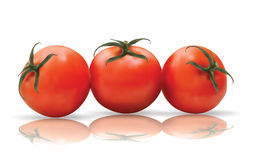 Red Tomatoes with reflection Royalty Free Stock Images