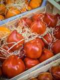 Red tomatoes on sale Stock Photography